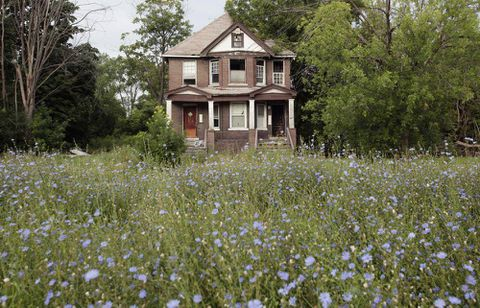 Detroit real estate: 'Not for the faint of heart'