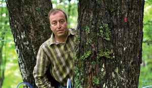 Martin Malenfant, owner of Erabliere Escuminac, poses in a maple and birch forest at the company installations in Escuminac, Quebec, August 11, 2011.