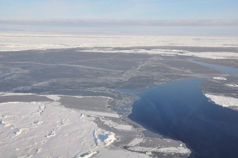 Winter ice coverage in Arctic sea reaching record low, scientists warn