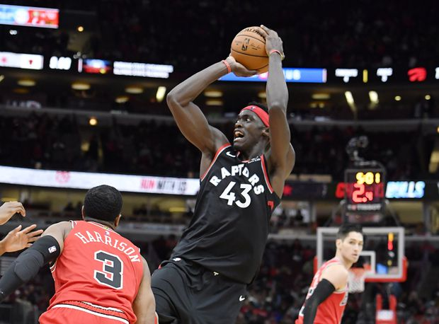 Image result for pascal siakam raptors
