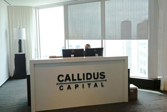 Bid to privatize Callidus plunged as company struggled