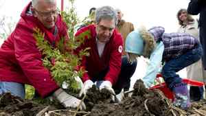 Liberal Leader Michael Ignatieff plants a tree with the help of four-year-old Charlie Marshall and candidate Lui Temelkovski, Sunday, May 1, 2011 in Markham, Ont.