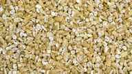 Steel-cut oats.