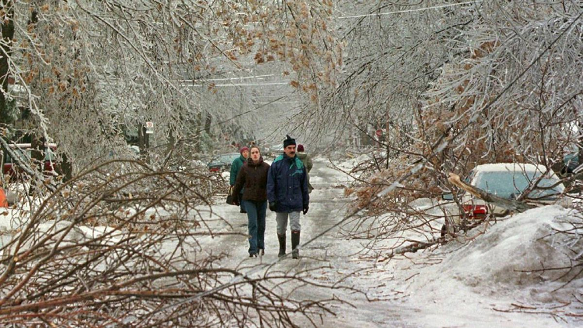 A recent study looked at 140 children born after the Quebec ice storm of 1998. Toddlers whose mothers felt severely anxious about that winter scored 15 IQ points lower than children whose mothers experienced less stress and adversity during that period.