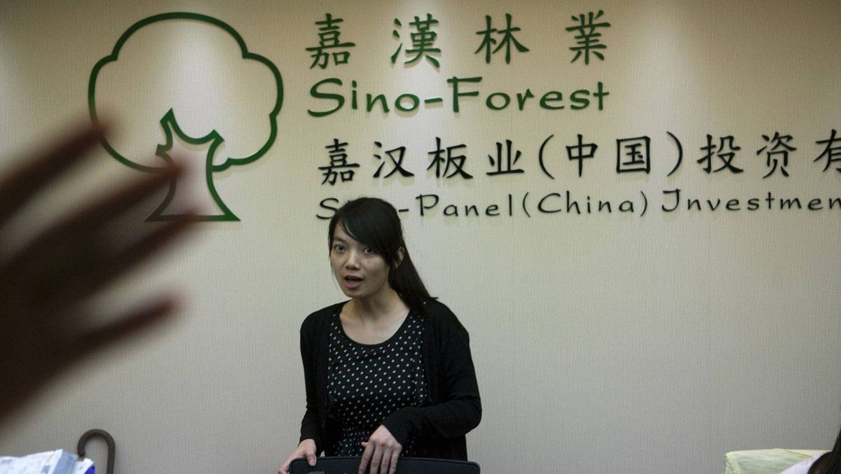 The offices in Guangzhou of Sino-Forest and its Sino-Panel affiliate.