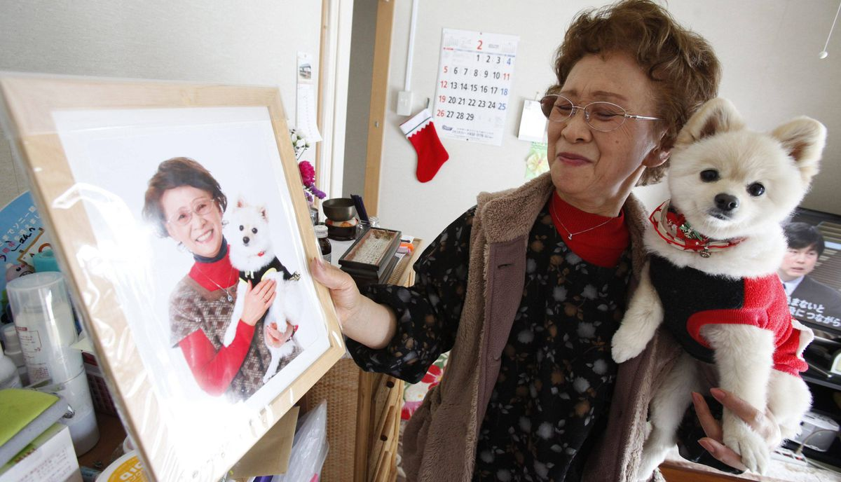 Katsuko Abe, 71, holds her dog Kaede as she shows framed portrait after receiving it from 3.11 Portrait Project volunteers in her living quarters at the Midorigaoka temporary shelter in Koriyama, Fukushima prefecture in the Tohoku region, February 27, 2012.