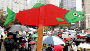 A cutout of a sockeye salmon is raised above the crowd during a demonstration to coincide with the start of the Cohen Commission Inquiry into the 2009 decline of sockeye salmon in the Fraser River, in Vancouver, B.C., on Monday, Oct. 25, 2010.