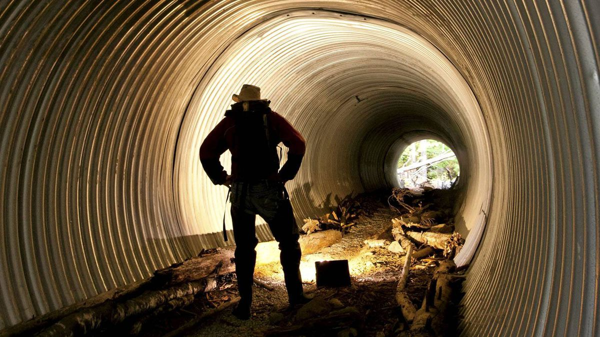 John Buchanan stands in a tunnel built for wildlife to pass under the highway near Squamish, B.C.