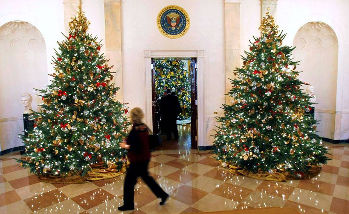 A woman passes Christmas trees in the White House.