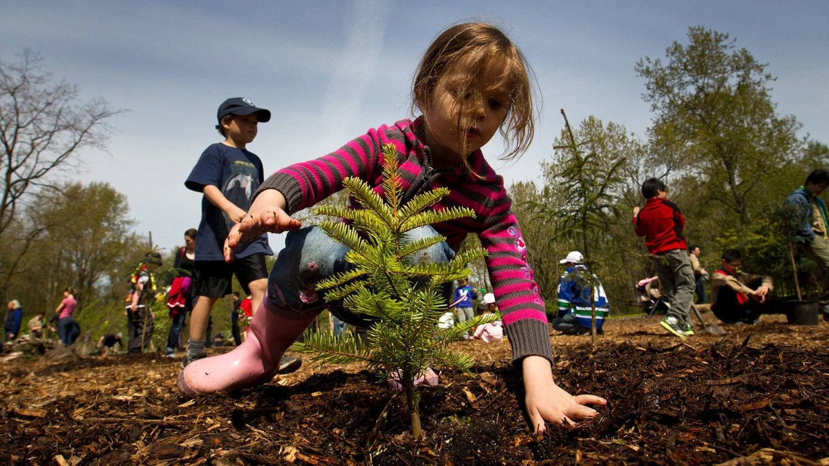 Four-year-old Norah Basha plants a tree at Everett Crowley Park as part of Earth Day celebrations in Vancouver, B.C., on Saturday April 21, 2012.