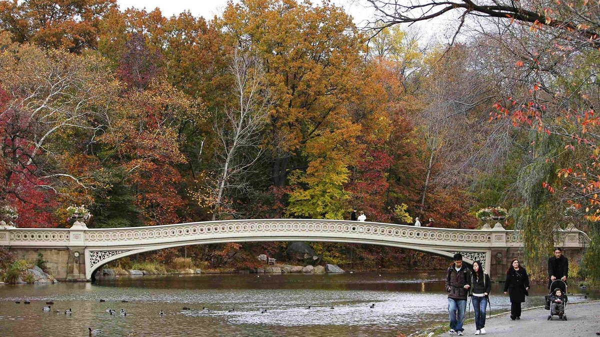 New York's Central Park can keep families busy all day with its trails, playgrounds and Children's Zoo.