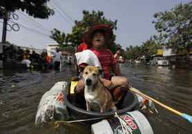 A Thai man and his dog leave their flooded neighborhood in a plastic vessel in Bangkok, Thailand.