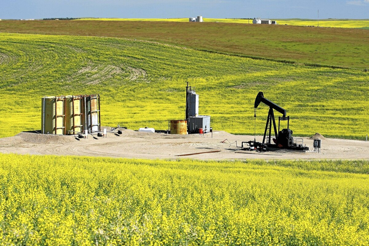 An oil field pumpjack owned by Daylight Energy: Ottawa approved Sinopec's acquisition of Daylight in December. It has promising assets, but no production.
