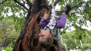 Six year old Maia Svenneby, who loves riding her bike and swimming in the lake, climbs one of her favourite trees in Kew Gardens in Toronto.