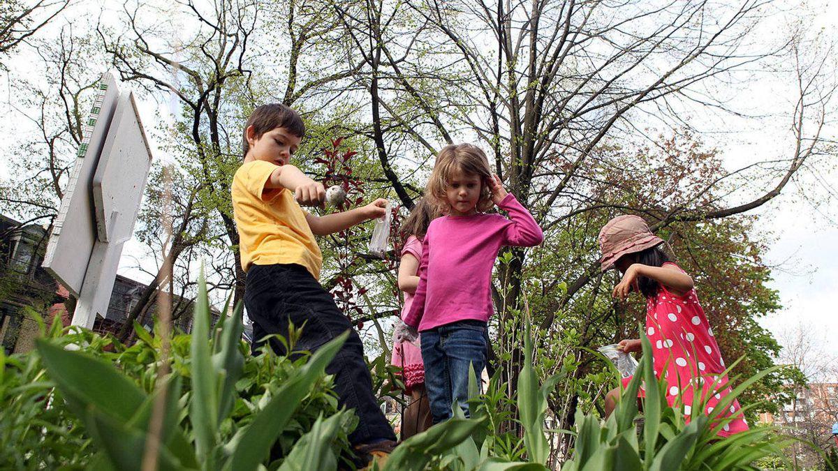 Winchester Public School kindergarteners Dordjie Radusinovic, 5, Nisha Kulkarni, 5, and Emma Syme, 5, look through the school's garden.