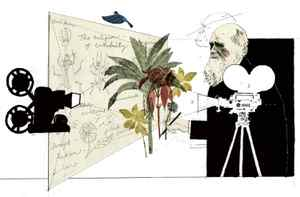 Illustration by Paddy Molloy for The Globe and Mail