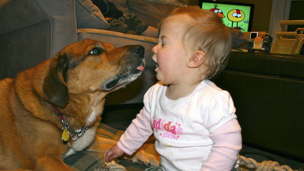 Jaclyn Appleby photo: Puppy Love - Our daughter loves our dog Takeo, and apparently the feeling is mutual.