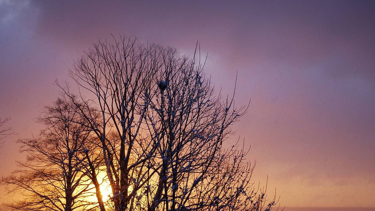Lynn Keane photo: Winter Sunrise - There is beauty and hope on this winter morning.