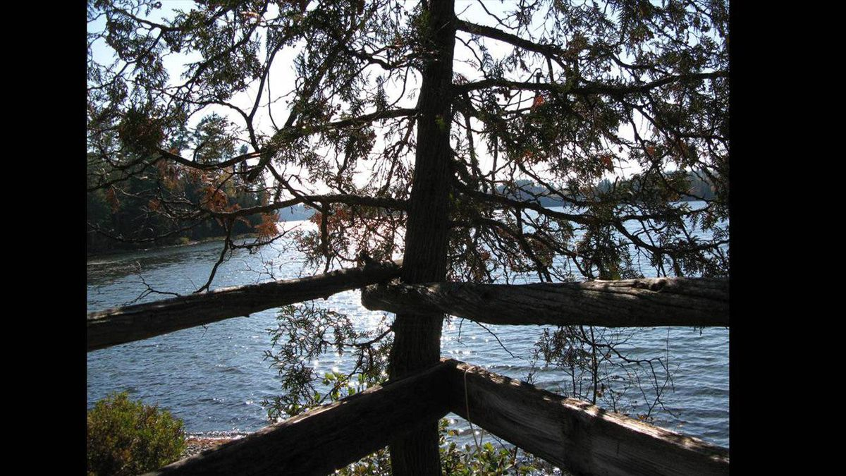 A view from the treehouse looking out onto the bay. The property is a remote island on Lake Temagami in northern Ontario.