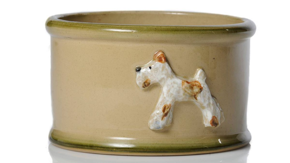 Vintage pottery dog bowl that is part of Marlene Cook's collection. It is also a favourite because the dog is a terrier, as are her pets. She owns many original pottery dog bowls dating from the 1900s to the 1950s.