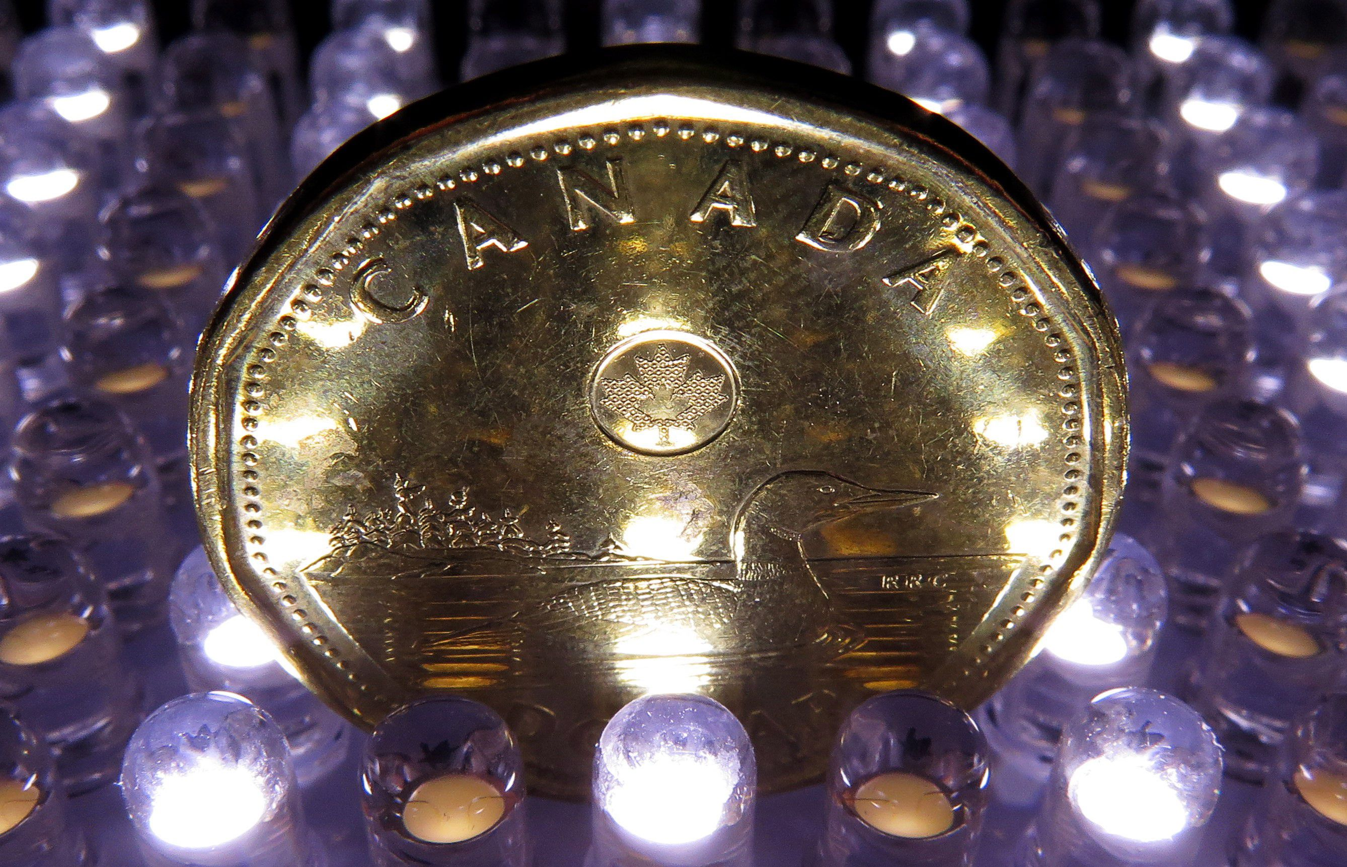Canada's yield advantage seen underpinning loonie over coming year