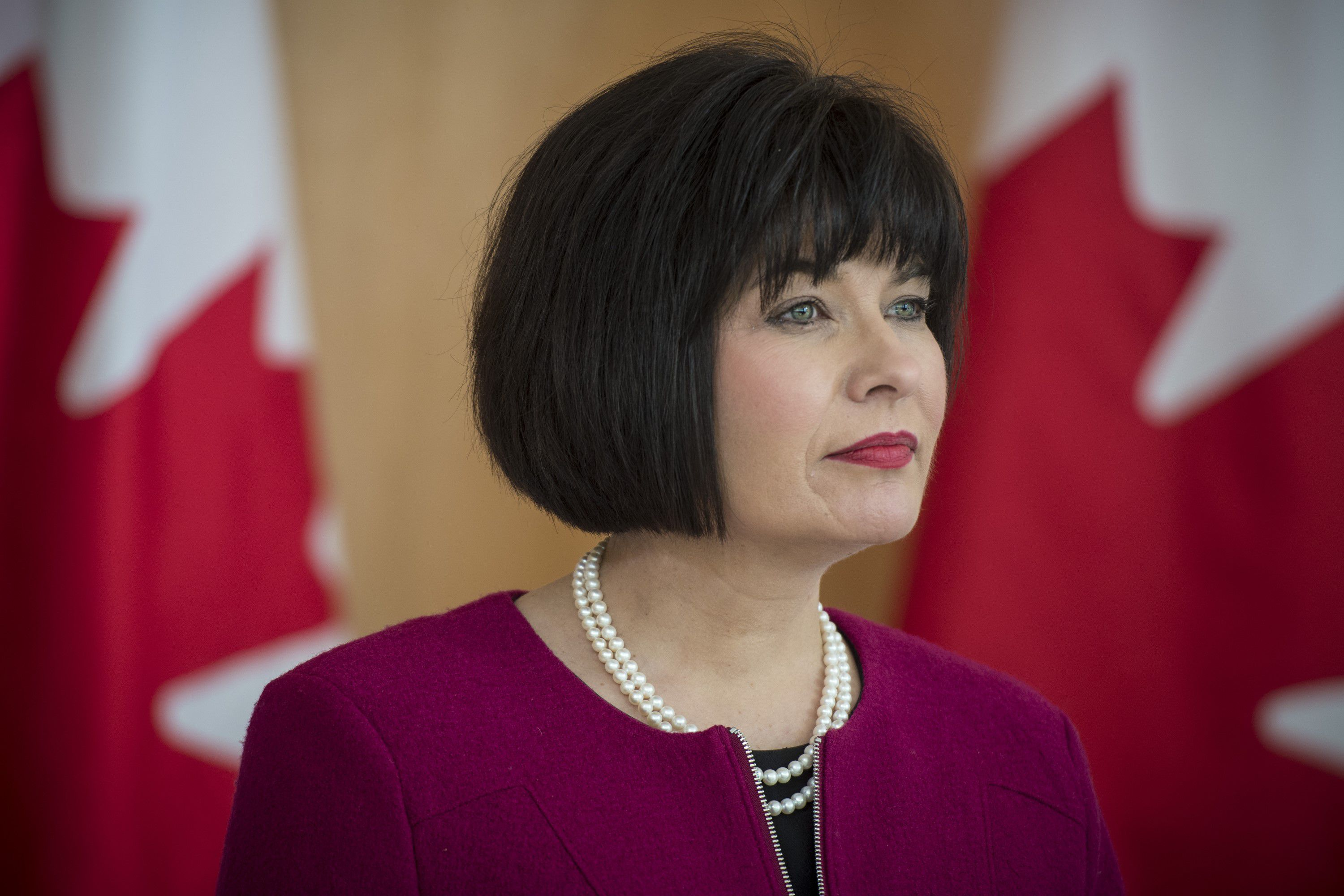 Federal government announces $4.5-million in funding for three palliative care projects
