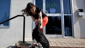 Erika Podlovics of the Wterloo, Ont., tech company Kik pets her dog Wellington outside her work. The fast-growing 25-person startup firm encourages staff to bring their dogs to work, play ping-pong in the games room and has catered meals daily for programmers.