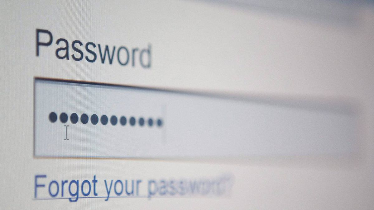 A screen to enter a password to a website is shown in Ottawa on Thursday July 22, 2010.