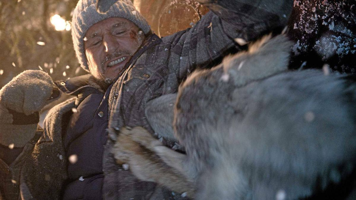 "A wolf takes a bite out of Liam Neeson in a scene from ""The Grey."""