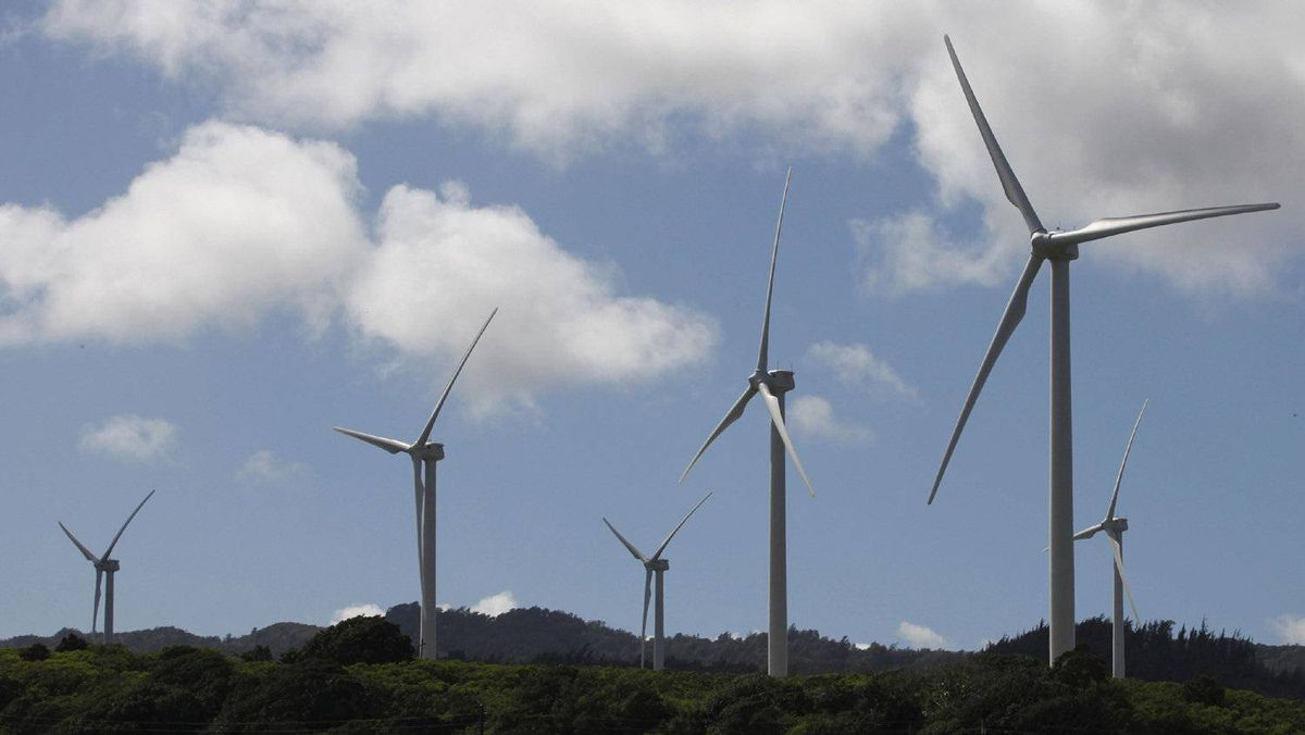 Wind turbines are pictured at the Kahuku wind farm at Oahu's northshore, Hawaii November 13, 2011.