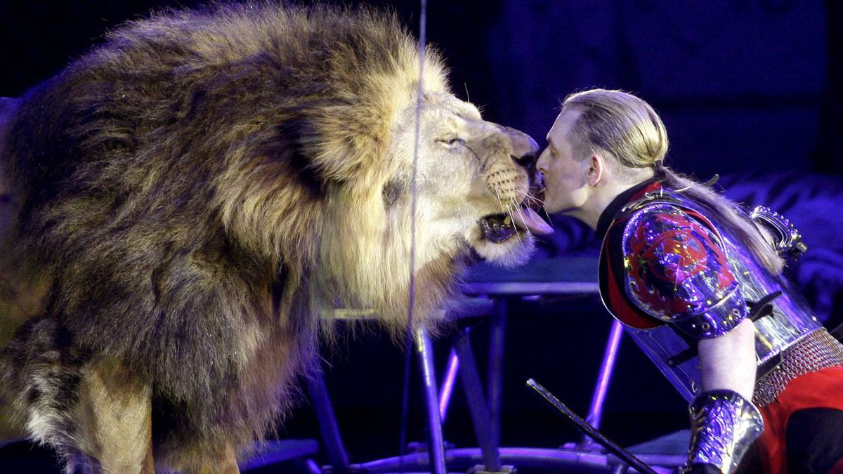 """Animal tamer Askold Zapashny of the Zapashny Brothers' circus kisses a lion during the premiere of the circus' show """"Camelot"""" in St Petersburg"""