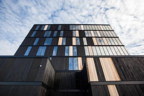 Next-generation wood pushes to greater heights