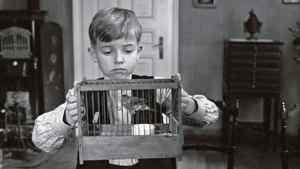 A scene from Michael Haneke's film The White Ribbon.