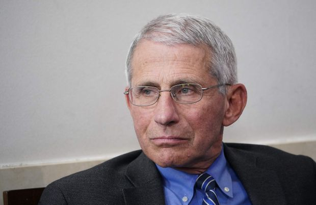 Anthony Fauci Warns of 'Suffering and Death' if US Reopens Too Soon