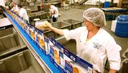 Workers package fish fillets at the High Liner Foods plant in Lunenburg, NS.