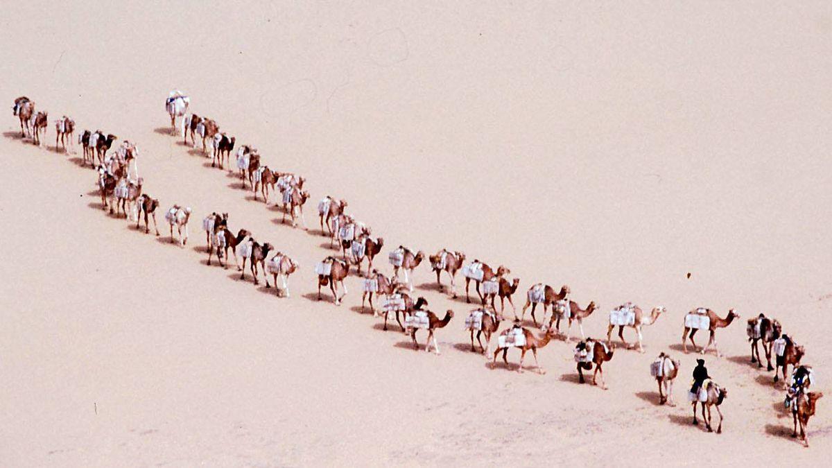 Malian tuaregs lead their caravan of dromaderies carrying salt through the Malian desert Sunday Jan. 11, 1998. The 20th Paris-Dakar rally race participants travelled through Mali and Mauritanian deserts on their way to Dakar, Senegal where the rally ended on Jan. 18.
