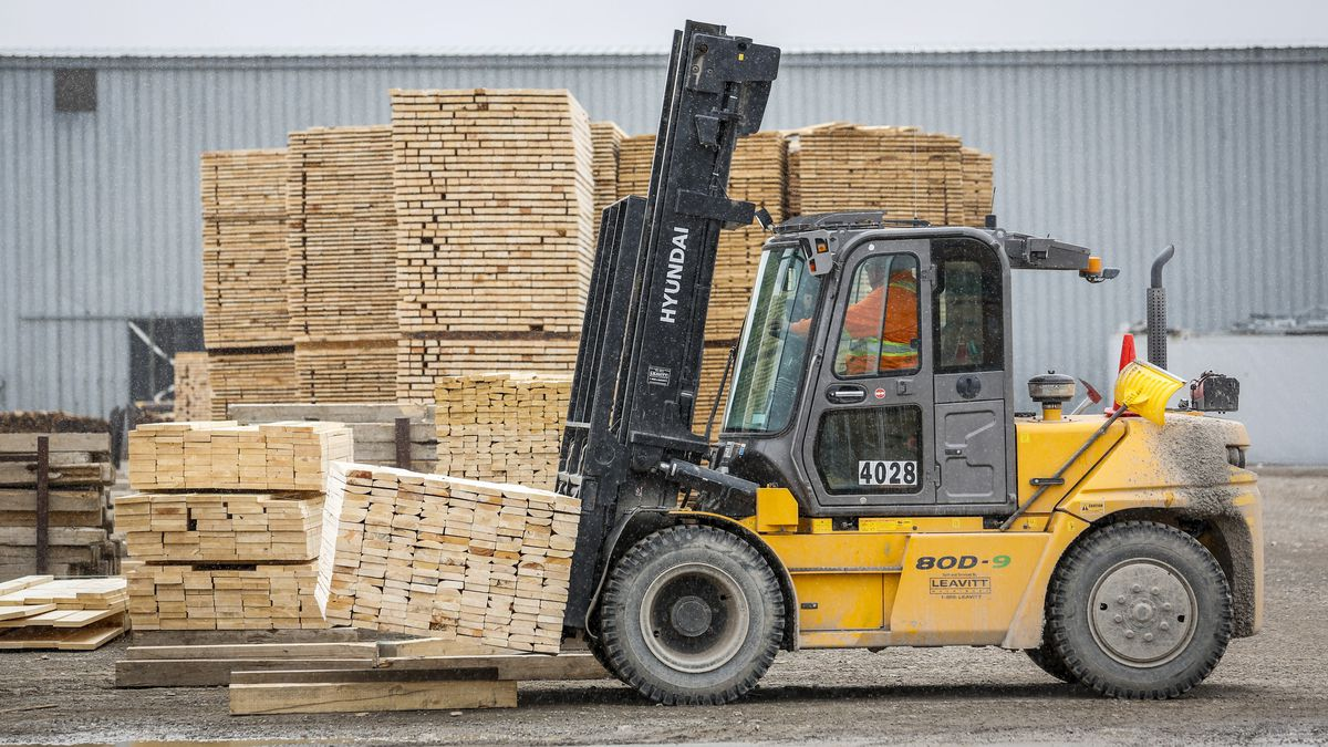 Lumber prices crash 70 per cent from record highs as party ends for producers