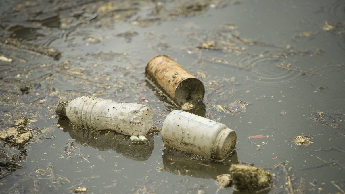 A layer of garbage and debris floats on the surface of the Lower Don River in Toronto, Ont. July 7, 2011.
