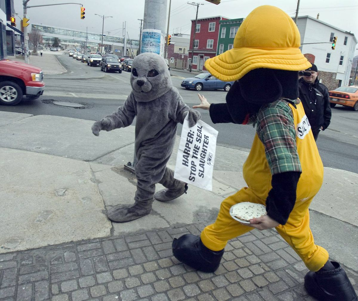 Emily Lavender, an activist with People for the Ethical Treatment of Animals, is chased by an unidentified man dressed in a dog suit in St. John's on Friday, Jan. 29, 2010.