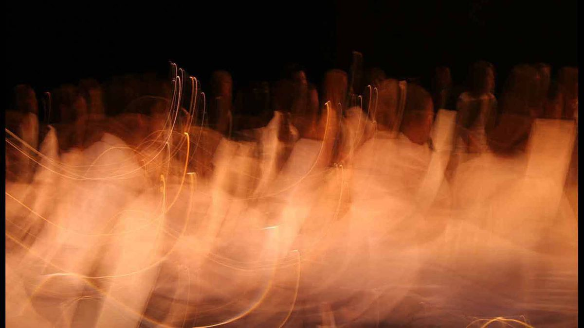 Members of the Grande Prairie Composite High School orchestra take flight in this abstract photograph.