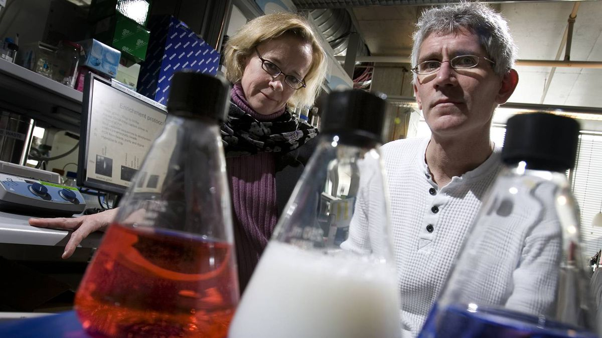 Scientists and couple Corey Nislow, right, and Guri Giaever, in this 2009 file photo, moved to Canada from Stanford University in the U.S. in 2006. They got lab jobs at the University of Toronto.