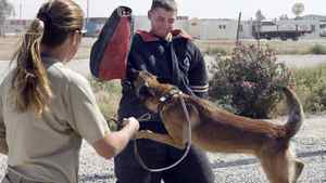 In this 2007 file photo, Canadian Forces Sapper Andrew Dukes, from Ormsby, Ont., tries out the bite suit as dog handler Crystal Greer, from Killean, Tx., keeps watch during a demonstration at the military K-9 unit at the base in Kandahar, Afghanistan