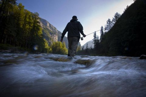 Great Bear Rainforest deal hinges on First Nations