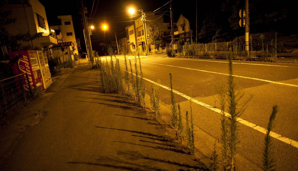 Weeds grow from the cracks in the road and sidewalk in the abandoned town of Namie, inside the 20-kilometer exclusion zone around the Fukushima Daiichi nuclear plant July 24, 2011. A year after the Tsunami, cleanup has begun, but experts say areas inside the nuclear exclusion zone will be difficult to decontaminate.