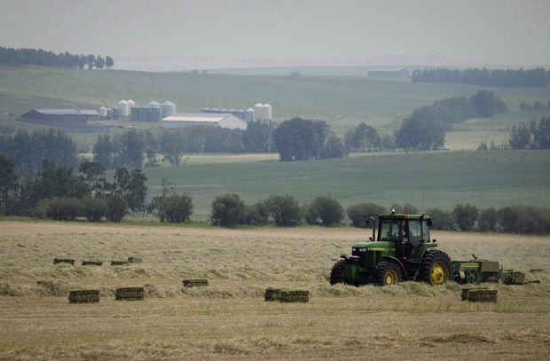 theglobeandmail.com - Kelly Cryderman - Drought in Western Canada is becoming an agricultural nightmare for farmers