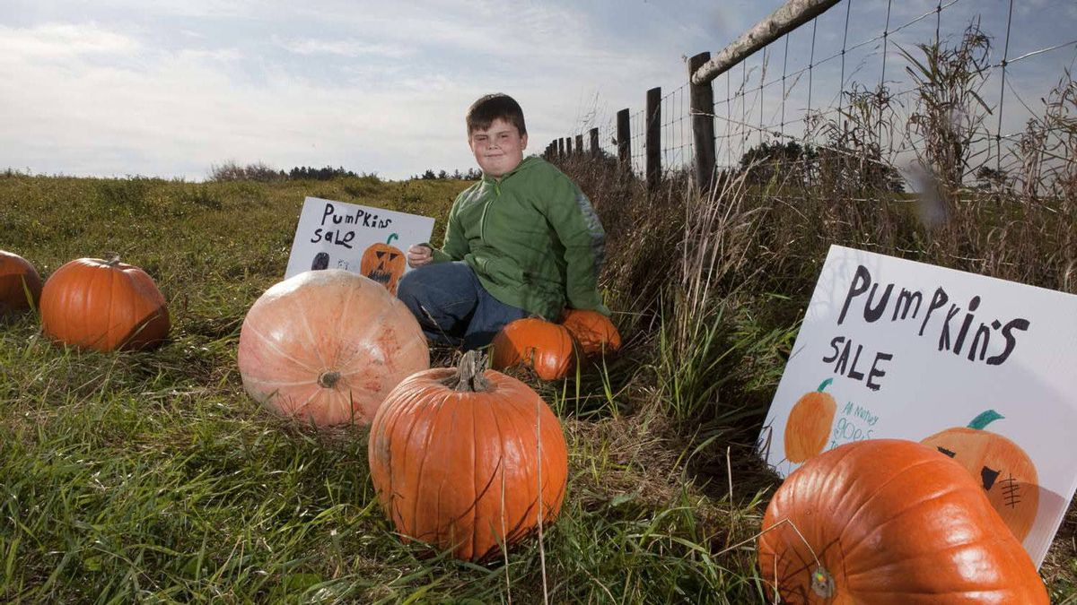Nine-year-old Jamie Burrell started up Graveyard Pumpkins in Thornhill Ont. There, he raises pumpkins and donates the what he makes selling them to the Toronto Humane Society.