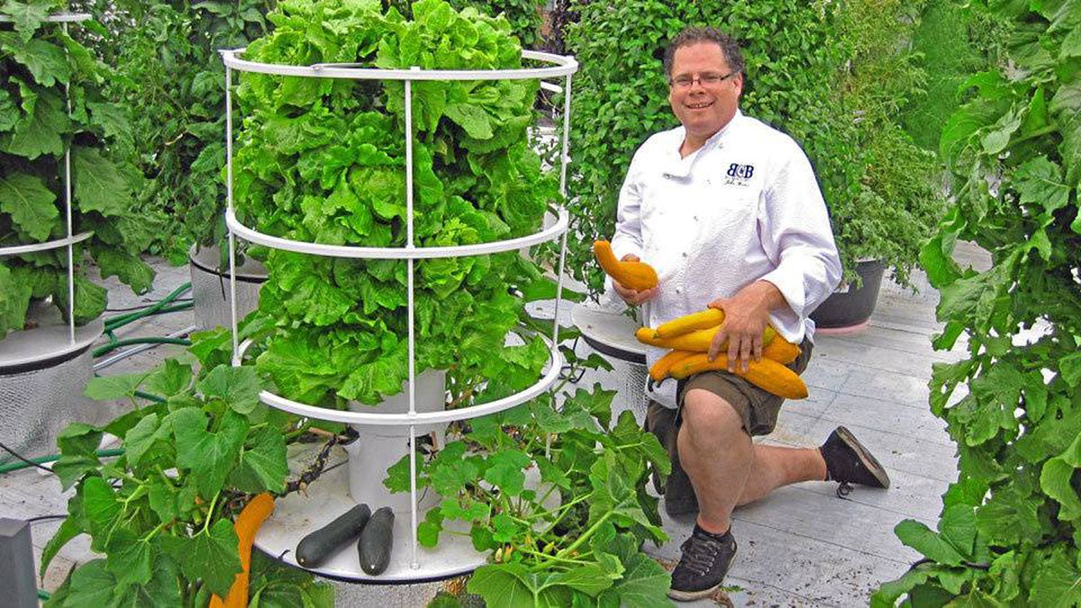 Chef John Mooney with his system in New York?s West Village: 'We can grow vertically, just like a city managing people.'