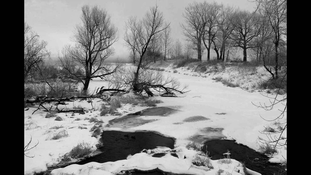Photo was taken in Parc Des Rapides in Lasalle, Quebec on a cold February morning with a Canon 50D.