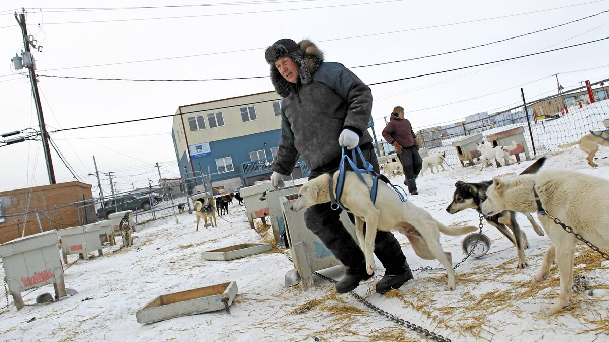 Rankin Inlet's Mayor John Hickes and his wife, Page Burt, tend to their sled dogs. There are no roads in or out of the area around Rankin Inlet, leaving air travel as the only way to travel.