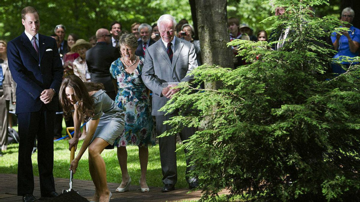 The Duke and Duchess of Cambridge take part in a ceremonial tree planting as Governor General David Johnston, right, and his wife Sharon watch at Rideau Hall in Ottawa on Saturday, July 2, 2011.
